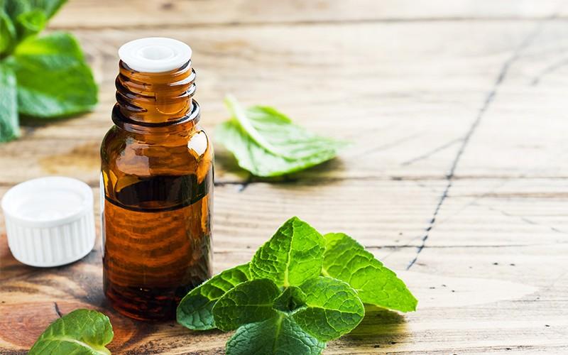 Saiba o que é terapia floral e quais são seus benefícios para o corpo.