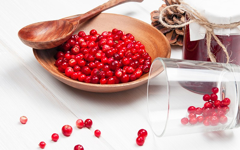 Saiba tudo sobre a fruta cranberry